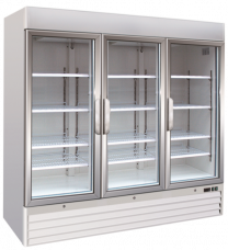 Upright One Glass Door Freezer Soli 205cm